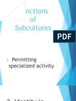 Functions of Subculture (4)