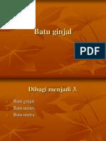 Batu Ginjal1