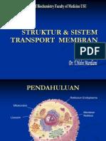 Bbc Slide Struktur Dan Sistem Transport Membran