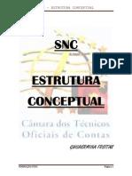 SNC - EstruturaConceptualDIS1409