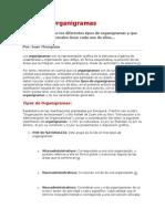 tiposdeorganigramas-130414135750-phpapp01