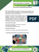 Estructuración de fases y requerimientos del proyecto