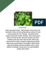 Pokok Herba