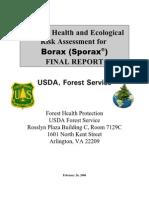 022406_borax