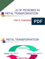 Microbe Metal