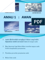 AMALI SCE3110
