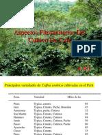 Enfermedaes Cafe_Oscar Cabezas