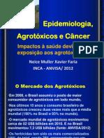 Neice Faria Epidemiologia Agrotoxicos Cancer