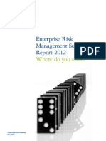 Deloitte ERS Report 2012
