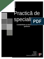 Practica de Specialitate CIG