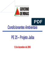 Resumo Condicionantes Ambientais COPAM 12-12-2006