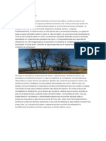 Entorno bioclimatico