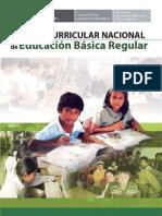 Diseño curricular nacional-2009