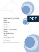 plan de desarrollo lilia.docx