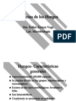 el-reino-de-los-hongos.pdf