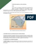 SUBDIVISIONES BATIMÉTRICAS DEL FONDO DEL MAR