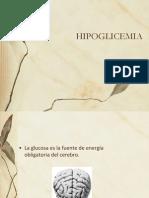 HIPOG - Copia