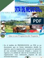 Presentación PRN PRONEGOCIOS