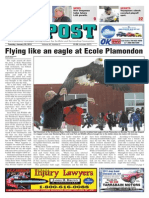 Injured Bald Eagle Released Into Wild