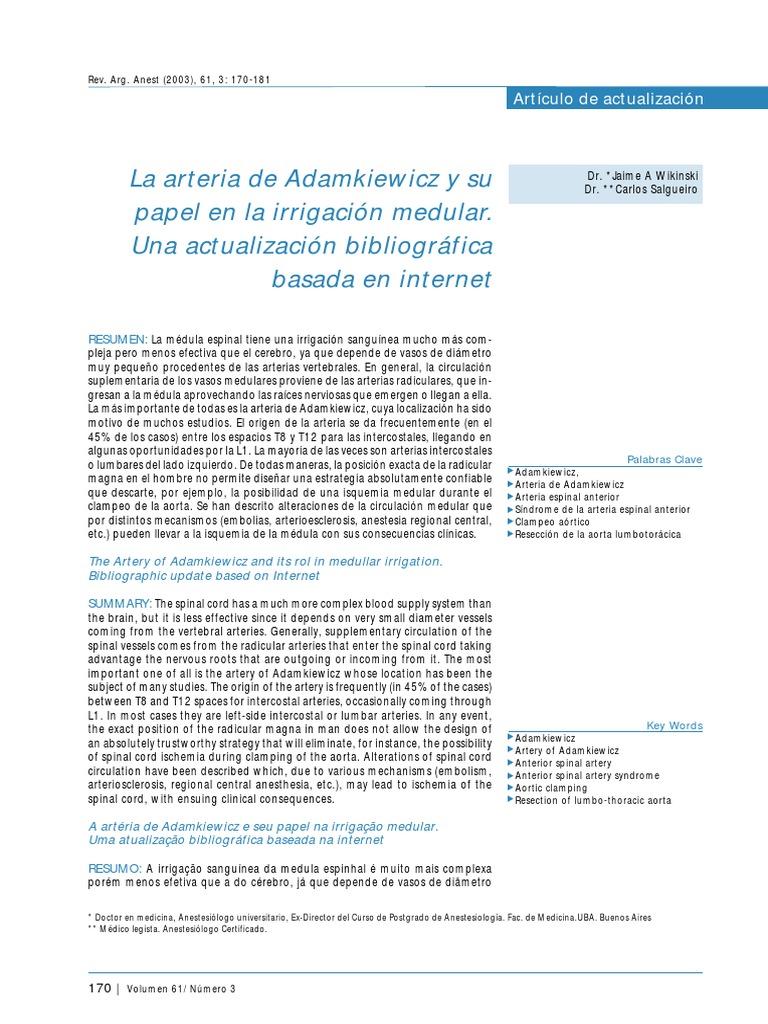 Arteria Radicular o Adamkiewicz