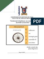 Programa Rueda-Univ. de Santiago de Chile