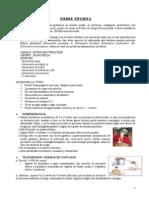 Fiebre Tifoidea- Brucelosis Clase