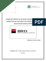Proiect Final 31040701SL118030 Velicu Valerii (1)