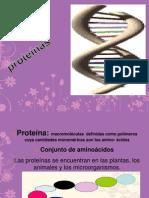2 Expo .Proteinas