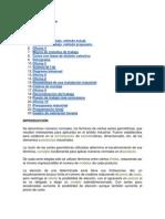 2_1_METODOS_4.pdf