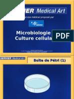 Microbiologie Culture Cellulaire