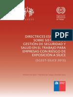 Directrices Especificas Sistemas Silice 2013