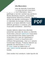 76565532-Distrofia-Musculara