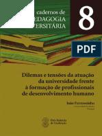 Joao Formosinho Caderno 8