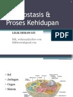 2. Homeostasis & Proses Kehidupan FKM 2012