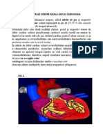 Soc Cardiogen Toretic