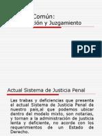 proceso comun investigacion y juzgamiento