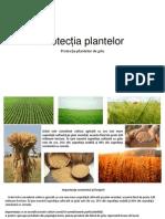 Protectia plantelor - GRIU.pptx