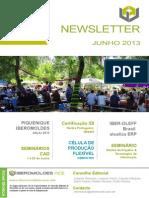 Newsletter Junho 2013 v13