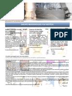 Newsletter 12 Setembro 2010