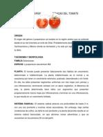 Caracteristicas Tomate