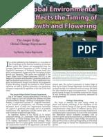 SSM Winter 2007 EthPol Plant Growth