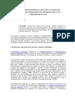 Articulo Protocolo de San Salvador