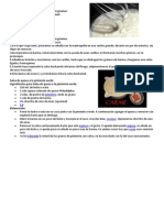 RECETAS DE SALSAS.docx