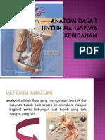 Anatomi Dasar Untuk Mahasiswa Kebidanan