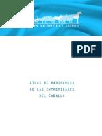 Atlas de radiografías de las extremidades del caballo.pdf