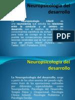 Neuropsicología del desarrollo expo