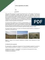 Protocolo muestreo vegetación y suelos