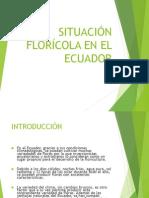 Sit Flor Ecuador