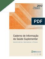 Caderno Informacao Suplementar Jun2012