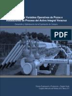 1341014208Monitoreo de Variables Operativas en Pozos e Instalaciones de Proceso Del AIV
